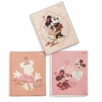Μπομπονιέρα βάπτισης Disney καδράκι Minnie κωδ.: na100
